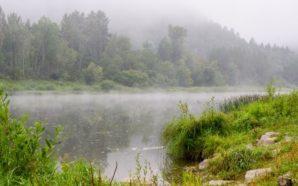Zone umide, un patrimonio da tutelare