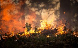 L'Attica brucia, villaggio in cenere
