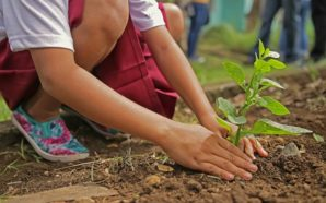 Riformismo ambientalista o rivoluzione social-ecologista?