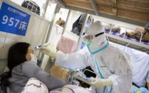Attivisti e ritardi, l'emergenza coronavirus scuote il Pcc