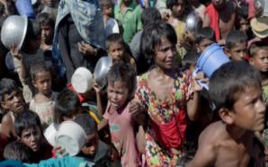 Rohingya alla deriva, Dacca li confina nell'isola-fluttuante
